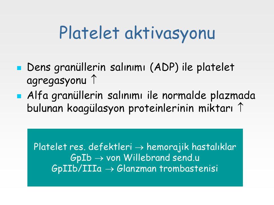 Platelet aktivasyonu Dens granüllerin salınımı (ADP) ile platelet agregasyonu 