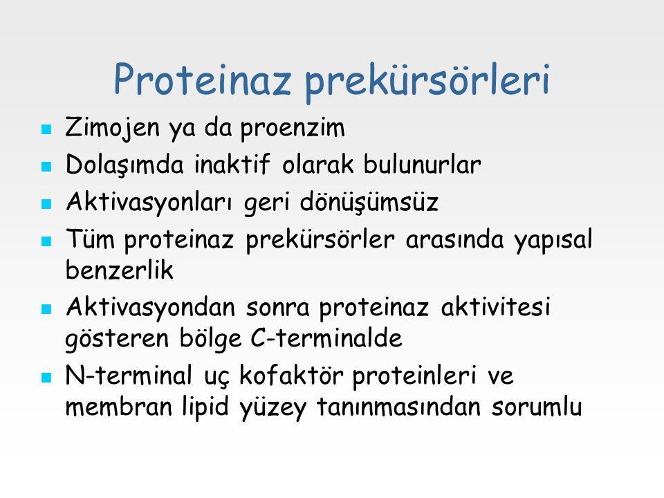 Proteinaz prekürsörleri
