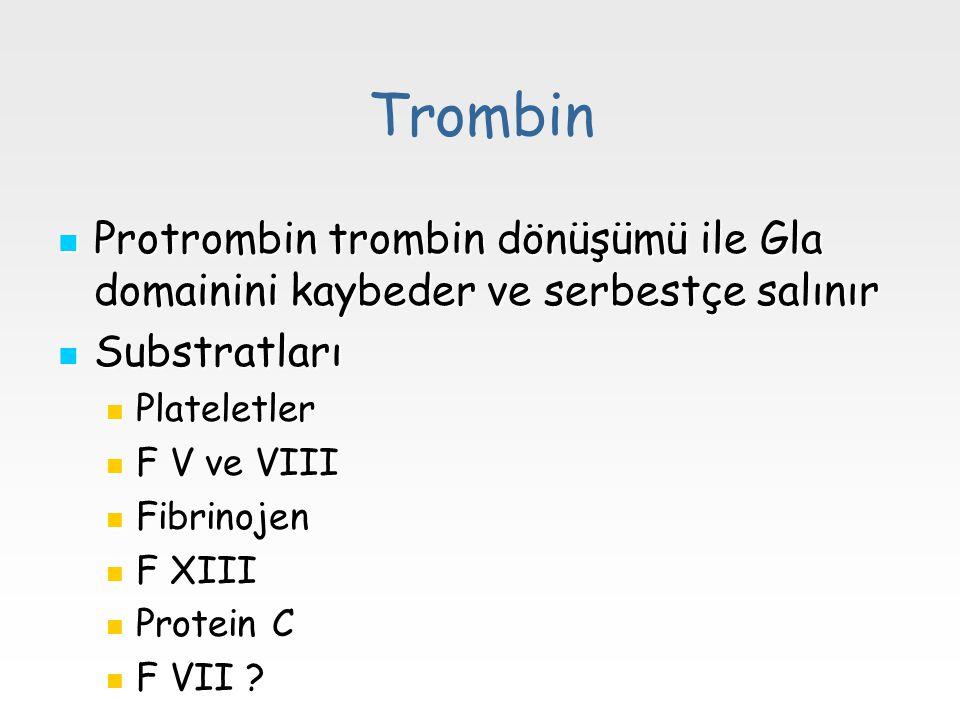Trombin Protrombin trombin dönüşümü ile Gla domainini kaybeder ve serbestçe salınır. Substratları.