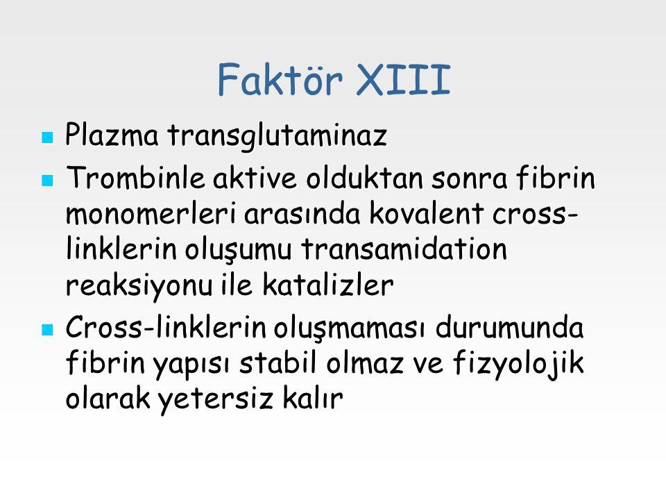 Faktör XIII Plazma transglutaminaz