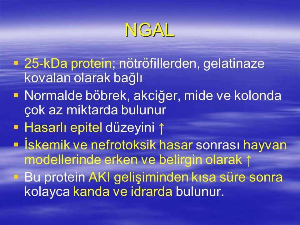 NGAL 25-kDa protein; nötröfillerden, gelatinaze kovalan olarak bağlı