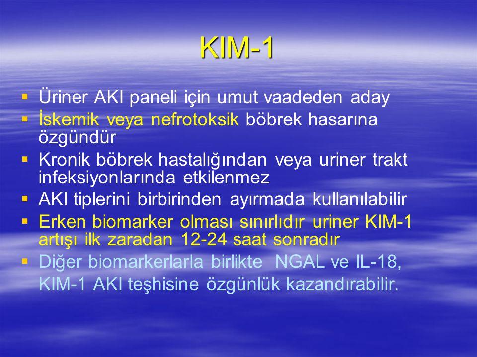 KIM-1 Üriner AKI paneli için umut vaadeden aday