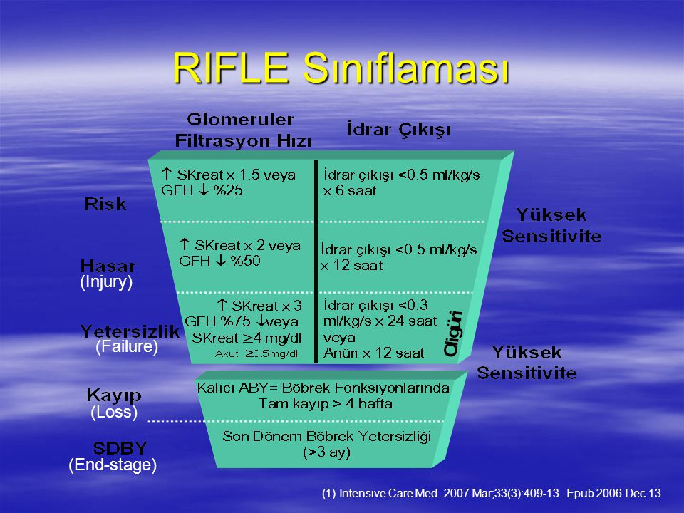 RIFLE Sınıflaması (Injury) (Failure) (Loss) (End-stage)