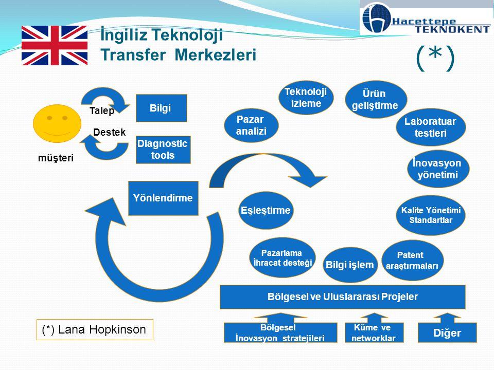 Bölgesel ve Uluslararası Projeler İnovasyon stratejileri