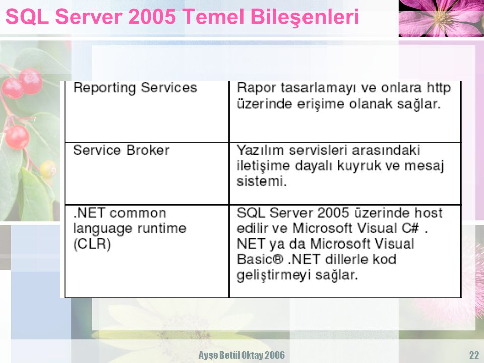 SQL Server 2005 Temel Bileşenleri