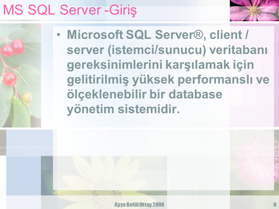 MS SQL Server -Giriş