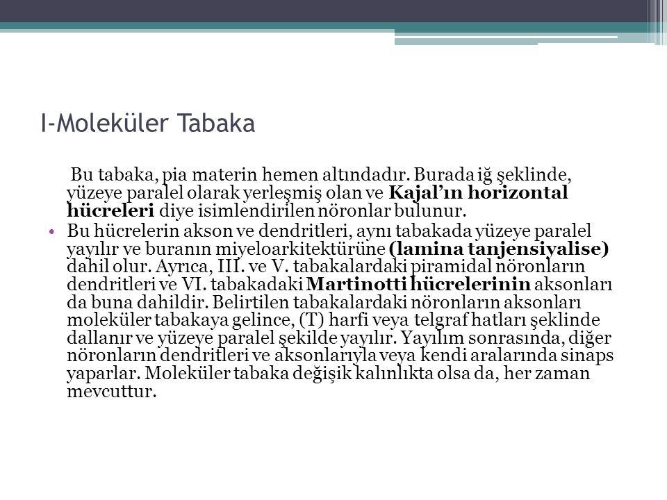I-Moleküler Tabaka