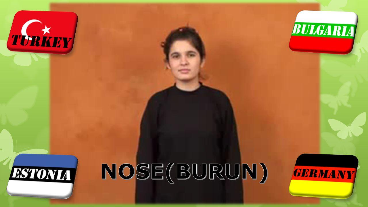 NOSE(BURUN)