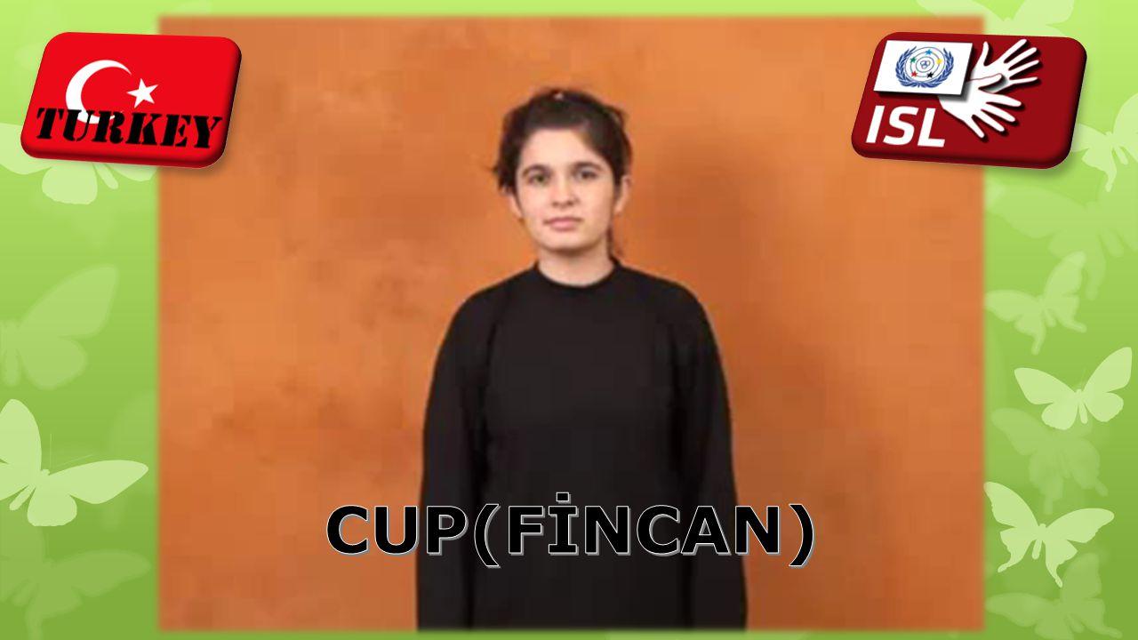 CUP(FİNCAN)