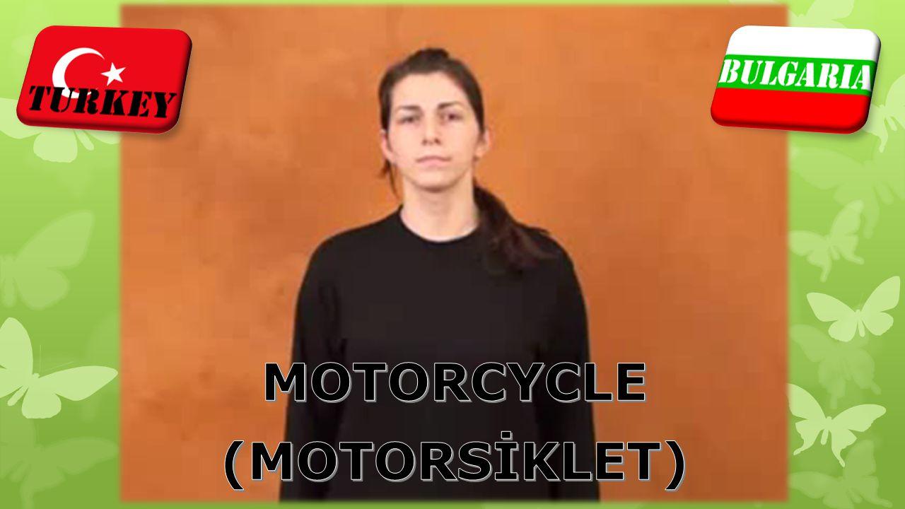 MOTORCYCLE (MOTORSİKLET)