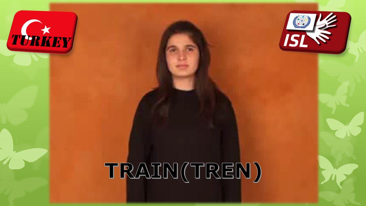 TRAIN(TREN)