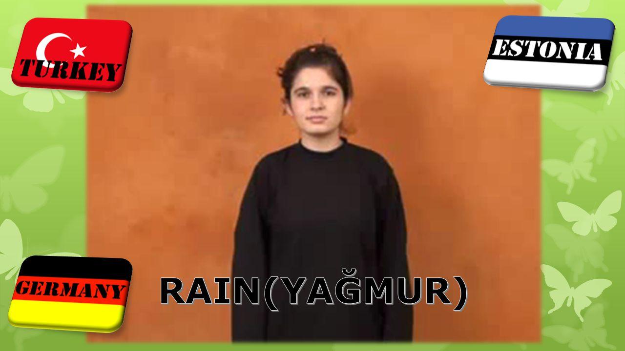RAIN(YAĞMUR)