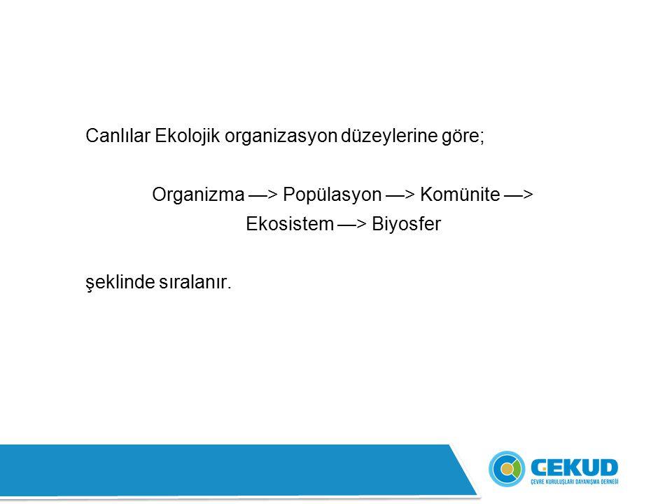 Canlılar Ekolojik organizasyon düzeylerine göre;