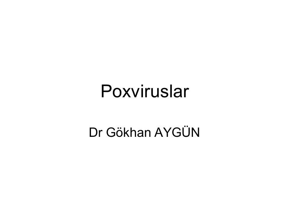 Poxviruslar Dr Gökhan AYGÜN