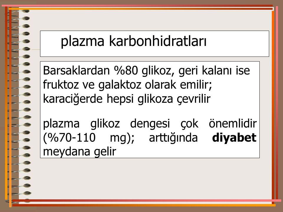 plazma karbonhidratları