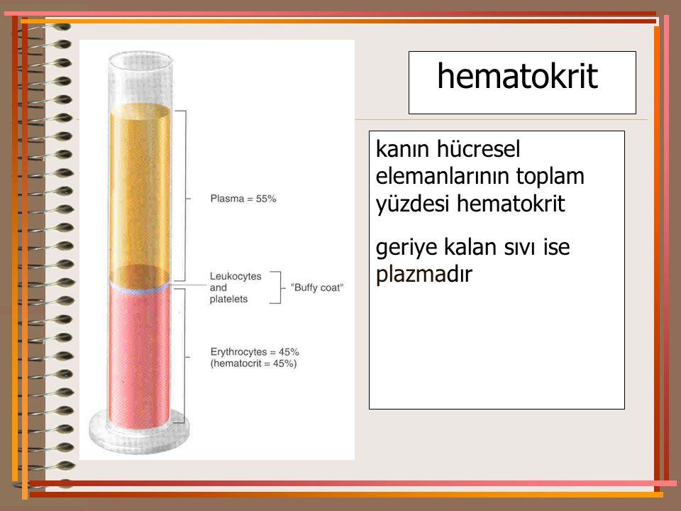 hematokrit kanın hücresel elemanlarının toplam yüzdesi hematokrit