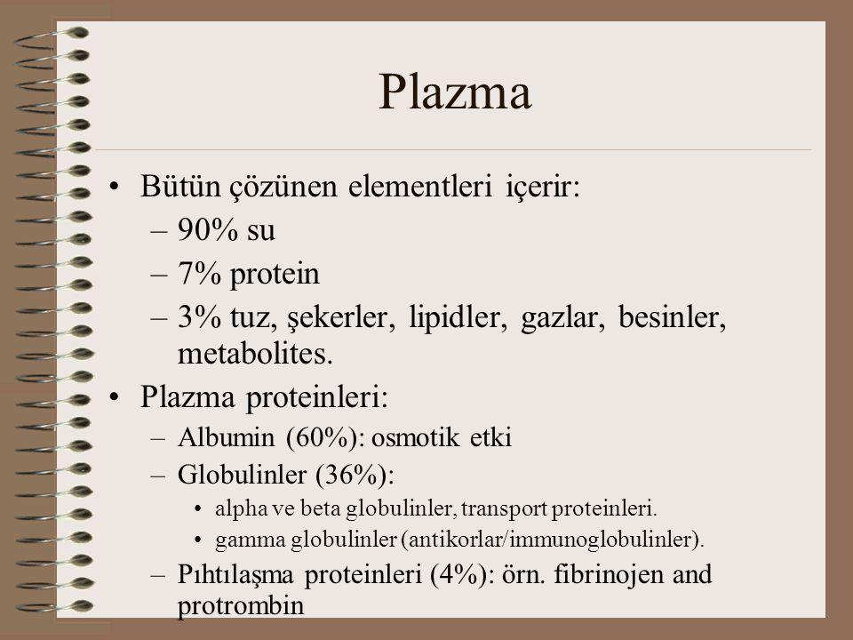 Plazma Bütün çözünen elementleri içerir: 90% su 7% protein