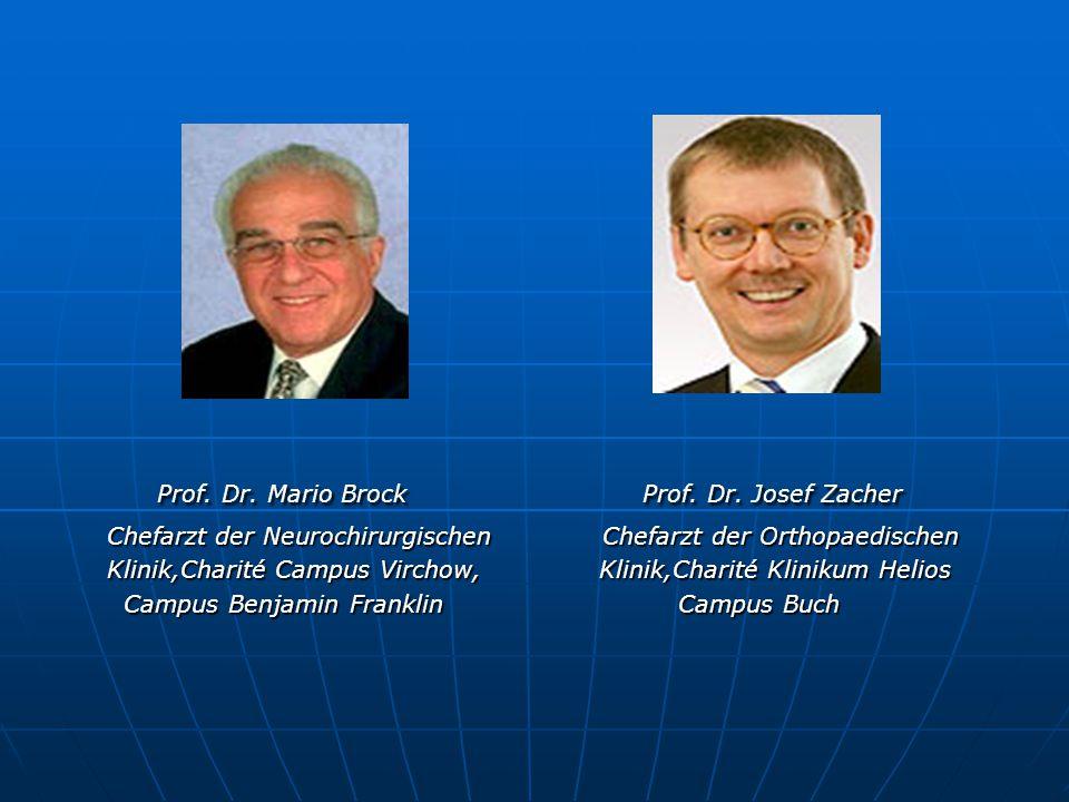 Prof. Dr. Mario Brock Prof. Dr. Josef Zacher