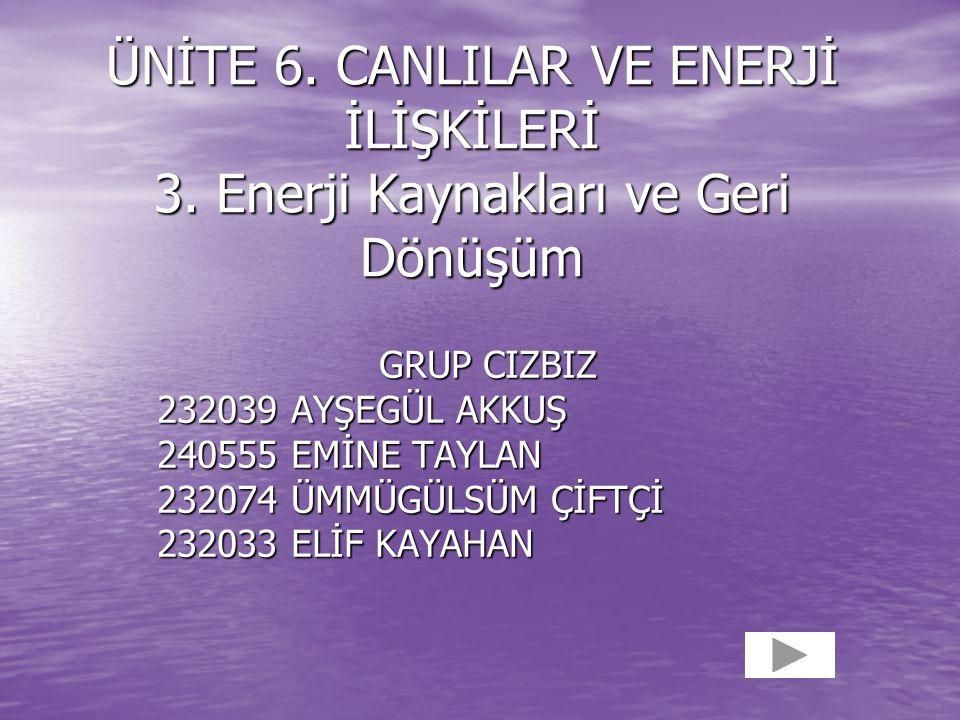ÜNİTE 6. CANLILAR VE ENERJİ İLİŞKİLERİ 3