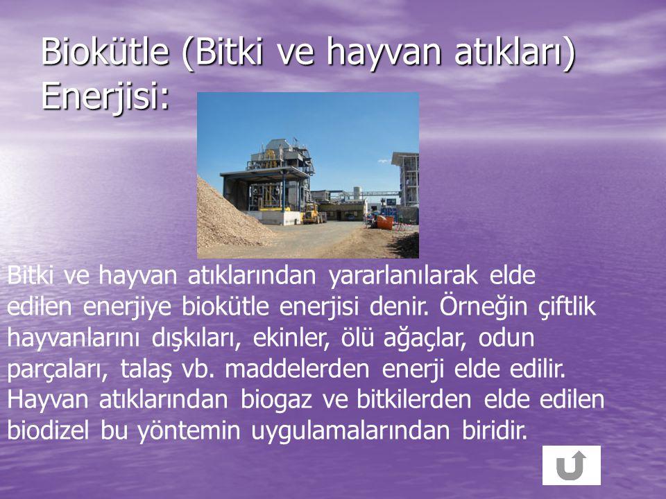 Biokütle (Bitki ve hayvan atıkları) Enerjisi: