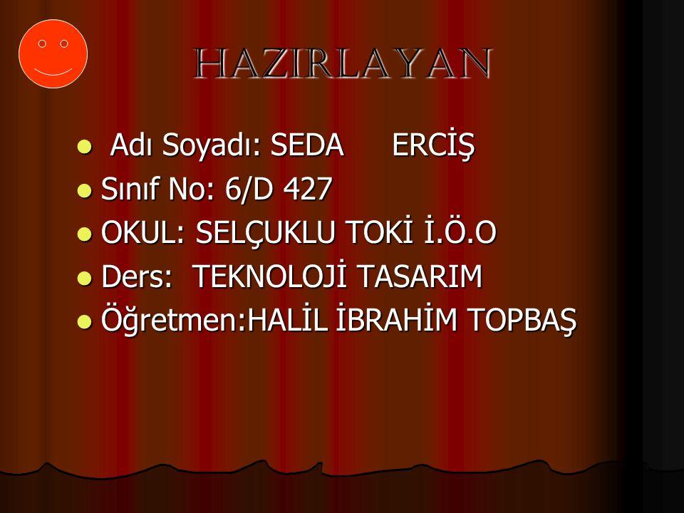 HAZIRLAYAN Adı Soyadı: SEDA ERCİŞ Sınıf No: 6/D 427