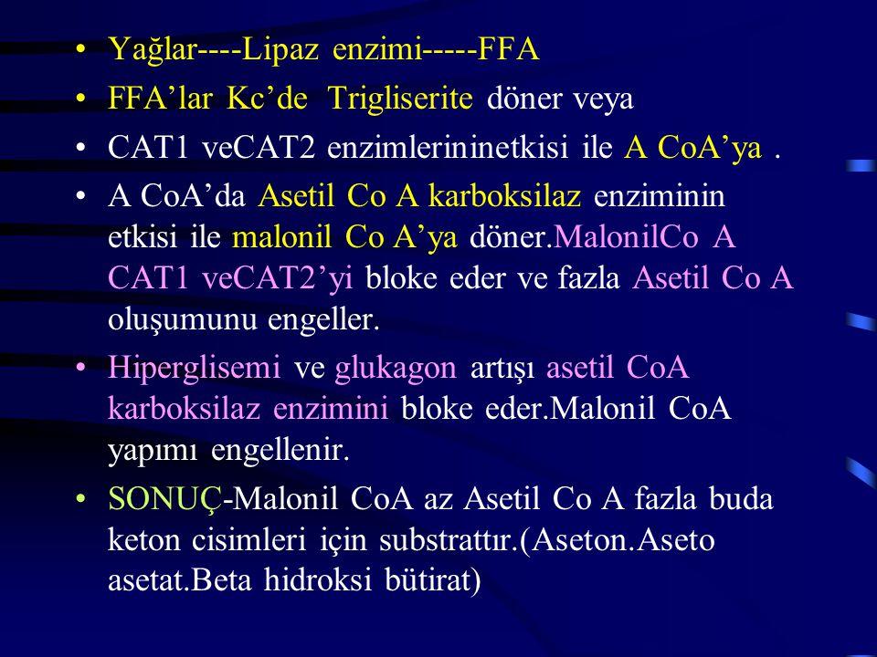 Yağlar----Lipaz enzimi-----FFA