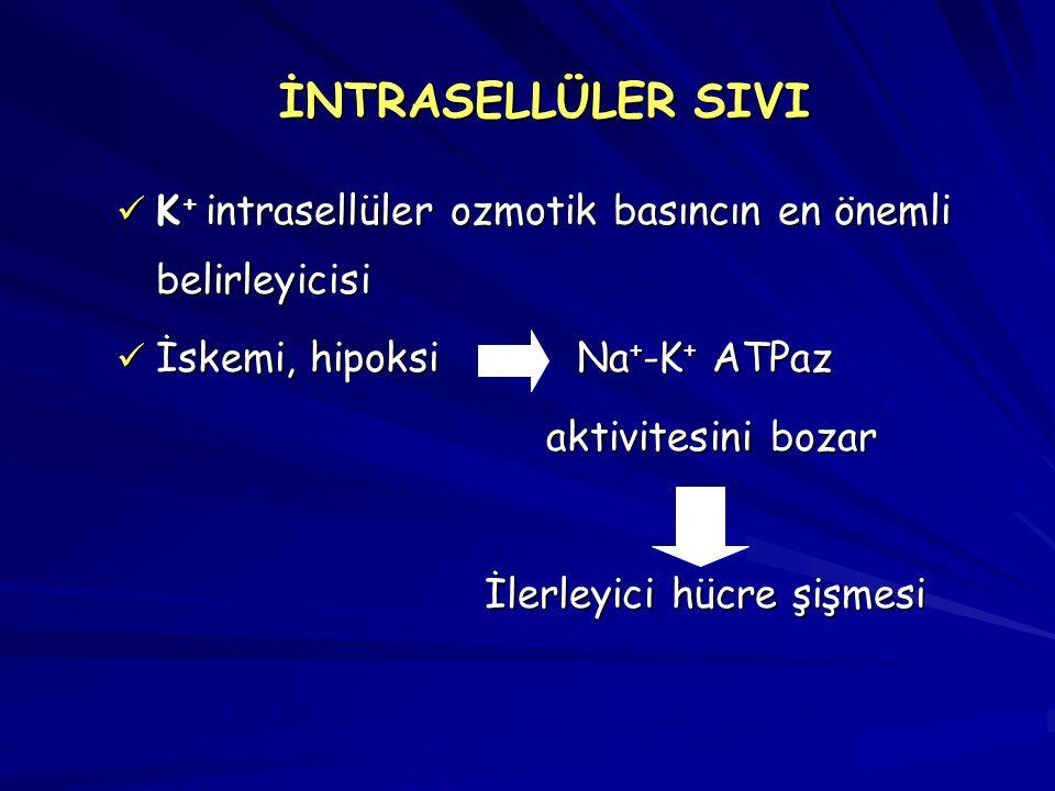 İNTRASELLÜLER SIVI K+ intrasellüler ozmotik basıncın en önemli belirleyicisi. İskemi, hipoksi Na+-K+ ATPaz.