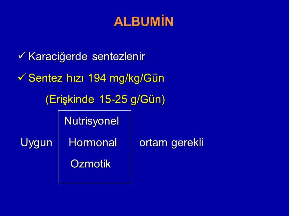 ALBUMİN Karaciğerde sentezlenir Sentez hızı 194 mg/kg/Gün