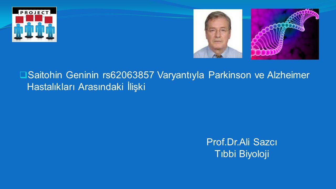 Saitohin Geninin rs62063857 Varyantıyla Parkinson ve Alzheimer Hastalıkları Arasındaki İlişki