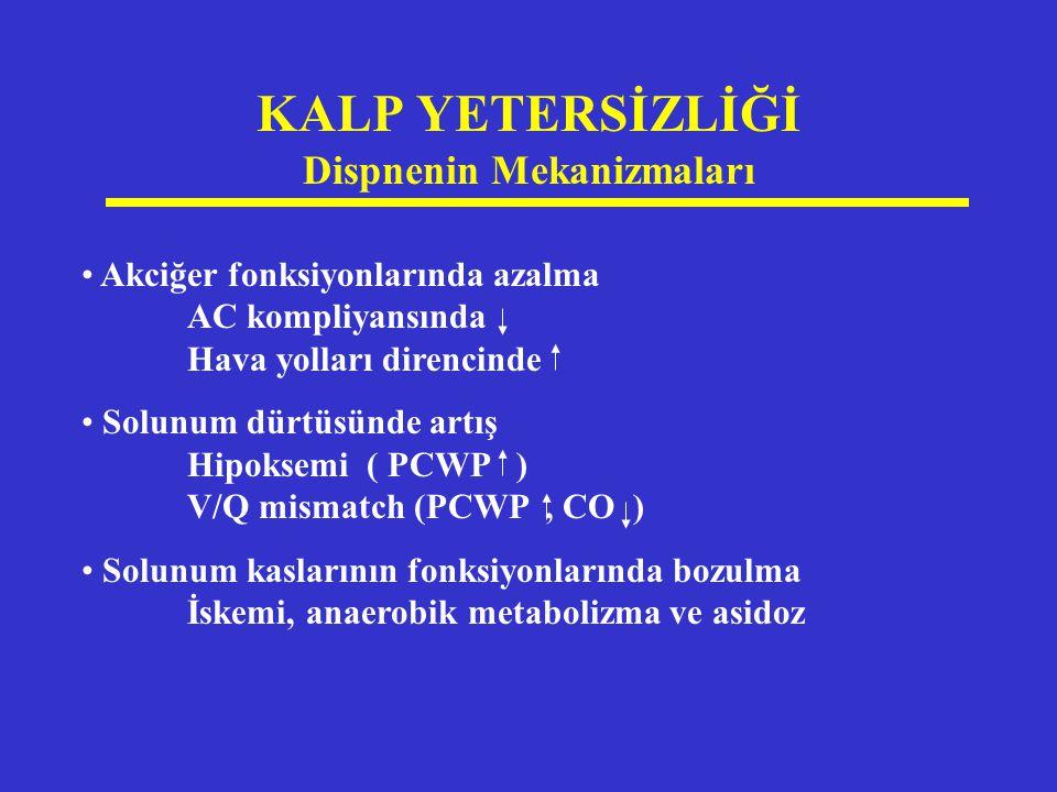 KALP YETERSİZLİĞİ Dispnenin Mekanizmaları