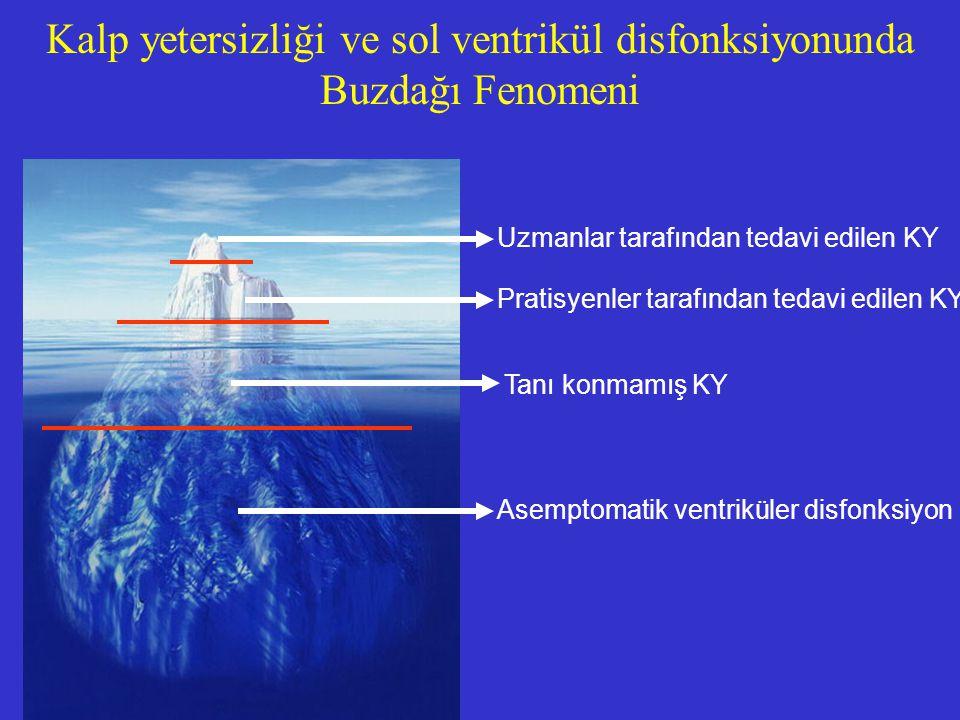 Kalp yetersizliği ve sol ventrikül disfonksiyonunda Buzdağı Fenomeni