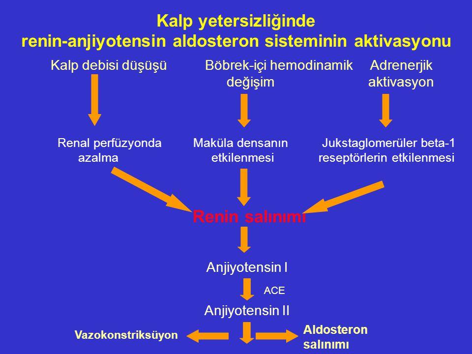 renin-anjiyotensin aldosteron sisteminin aktivasyonu