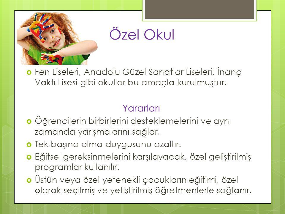 Özel Okul Fen Liseleri, Anadolu Güzel Sanatlar Liseleri, İnanç Vakfı Lisesi gibi okullar bu amaçla kurulmuştur.