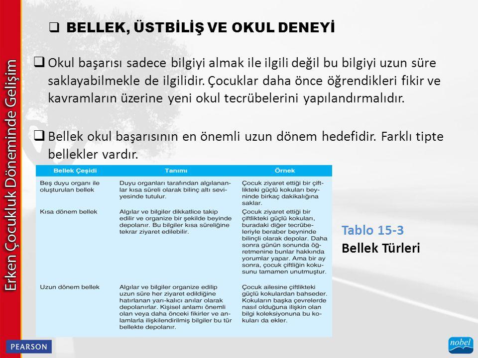 BELLEK, ÜSTBİLİŞ VE OKUL DENEYİ
