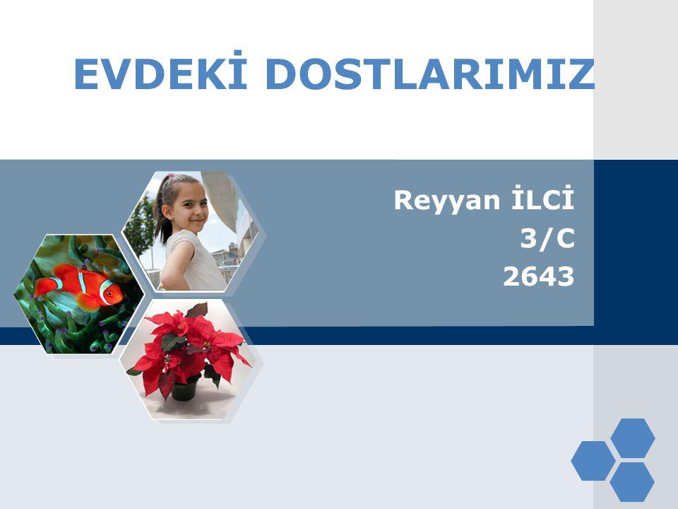 EVDEKİ DOSTLARIMIZ Reyyan İLCİ 3/C 2643