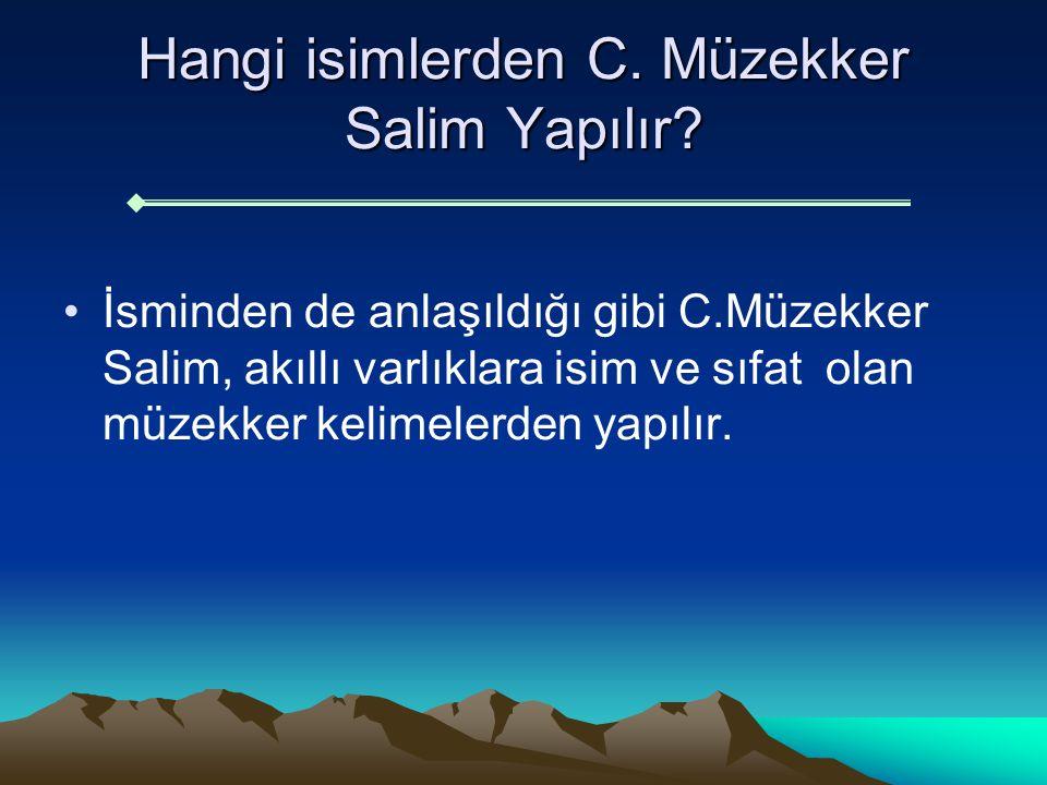 Hangi isimlerden C. Müzekker Salim Yapılır
