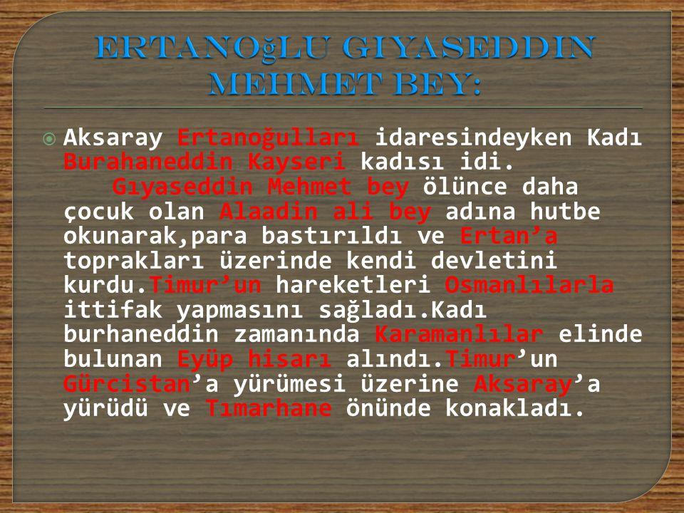 Ertanoğlu Gıyaseddin Mehmet Bey: