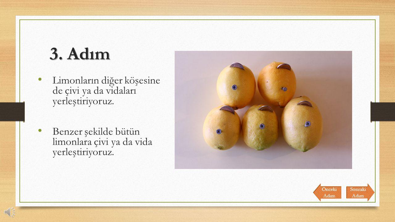 3. Adım Limonların diğer köşesine de çivi ya da vidaları yerleştiriyoruz. Benzer şekilde bütün limonlara çivi ya da vida yerleştiriyoruz.