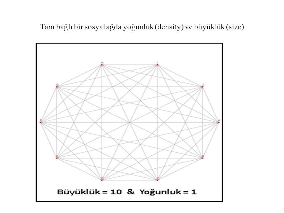 Tam bağlı bir sosyal ağda yoğunluk (density) ve büyüklük (size)