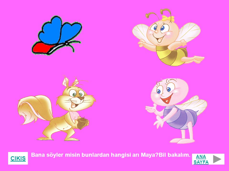Bana söyler misin bunlardan hangisi arı Maya Bil bakalım.