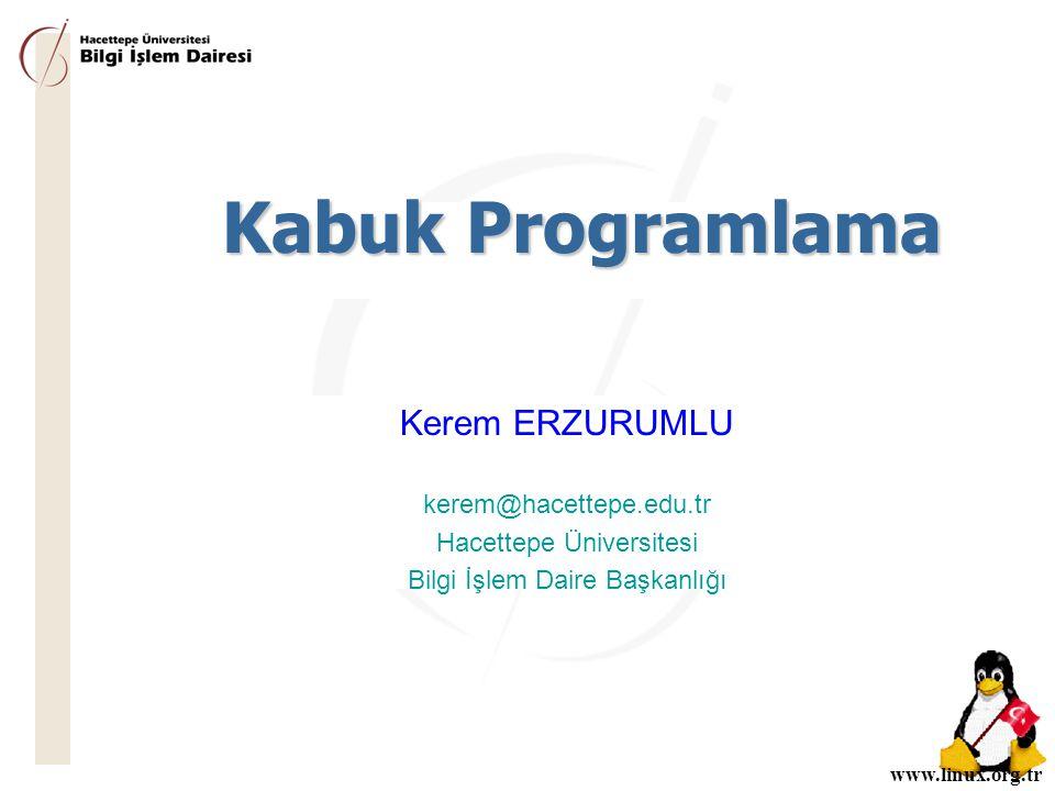 Kabuk Programlama Kerem ERZURUMLU kerem@hacettepe.edu.tr
