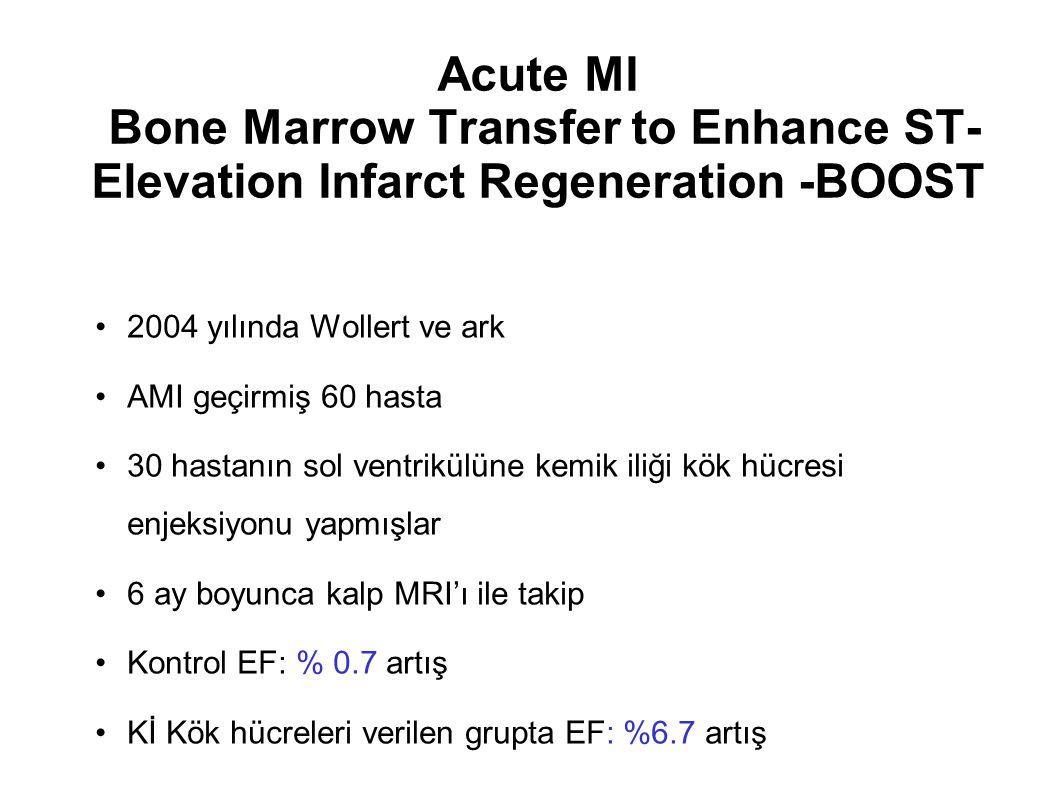 Acute MI Bone Marrow Transfer to Enhance ST-Elevation Infarct Regeneration -BOOST