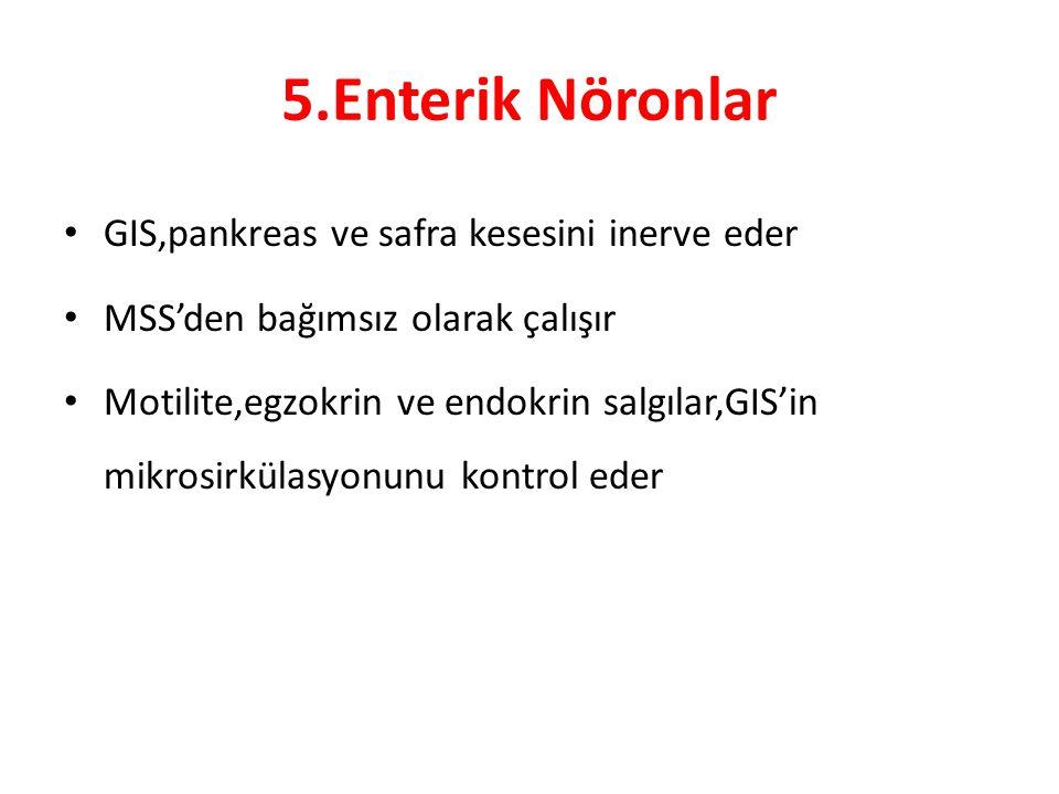 5.Enterik Nöronlar GIS,pankreas ve safra kesesini inerve eder