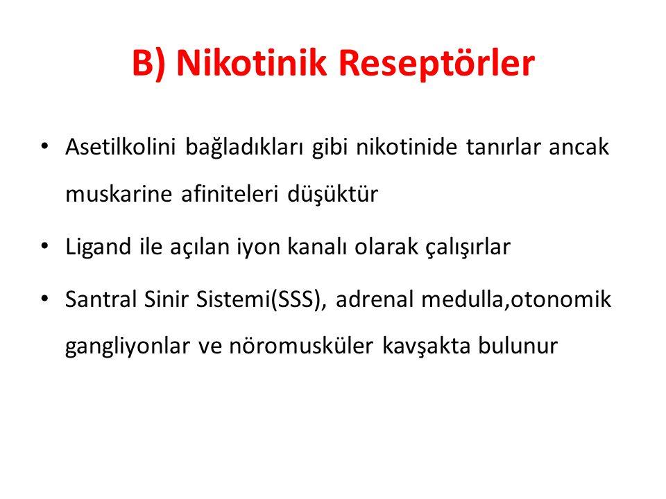 B) Nikotinik Reseptörler