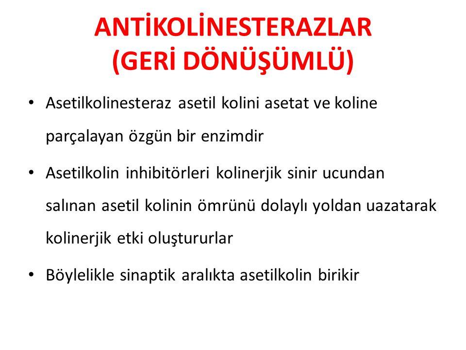 ANTİKOLİNESTERAZLAR (GERİ DÖNÜŞÜMLÜ)