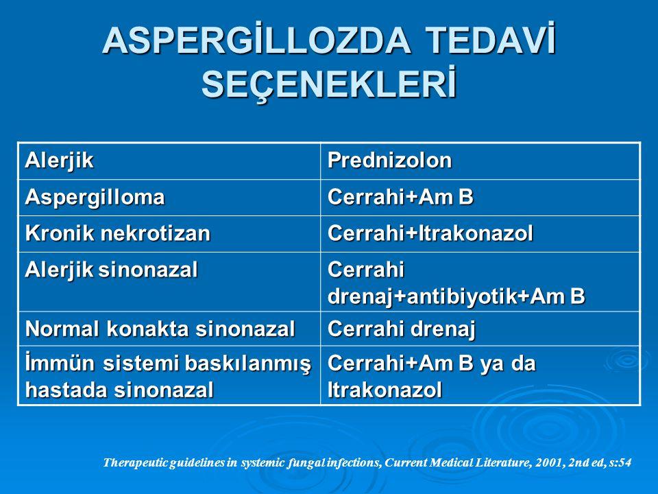 ASPERGİLLOZDA TEDAVİ SEÇENEKLERİ