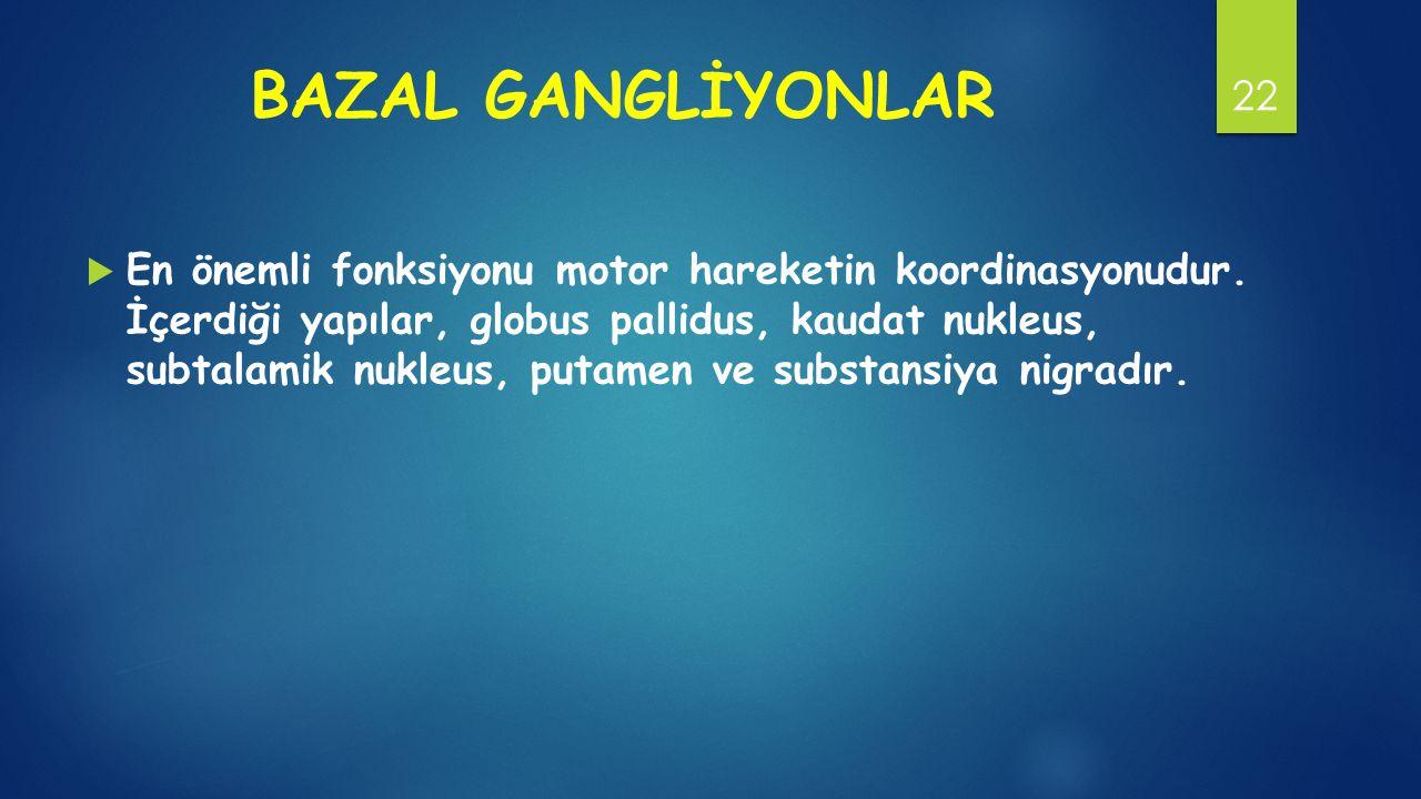 BAZAL GANGLİYONLAR