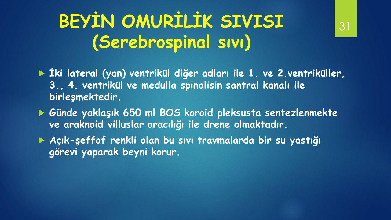 BEYİN OMURİLİK SIVISI (Serebrospinal sıvı)