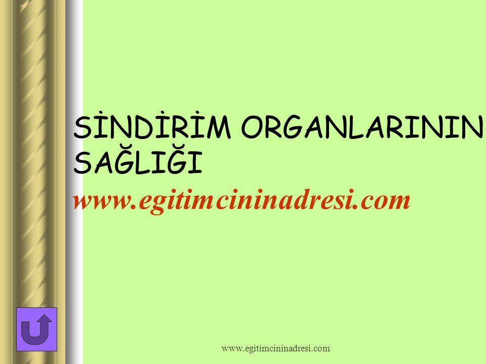 SİNDİRİM ORGANLARININ SAĞLIĞI www.egitimcininadresi.com