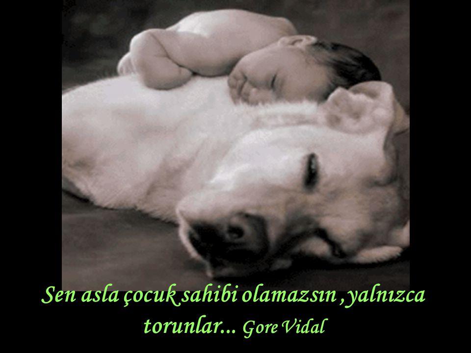 Sen asla çocuk sahibi olamazsın ,yalnızca torunlar... Gore Vidal